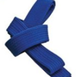 5th Kyu Belt blue