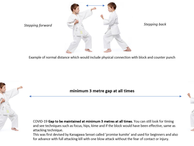 Kumite Guideline
